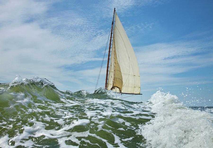Deal Island Annual Skipjack Race Photograph by Greg Pease