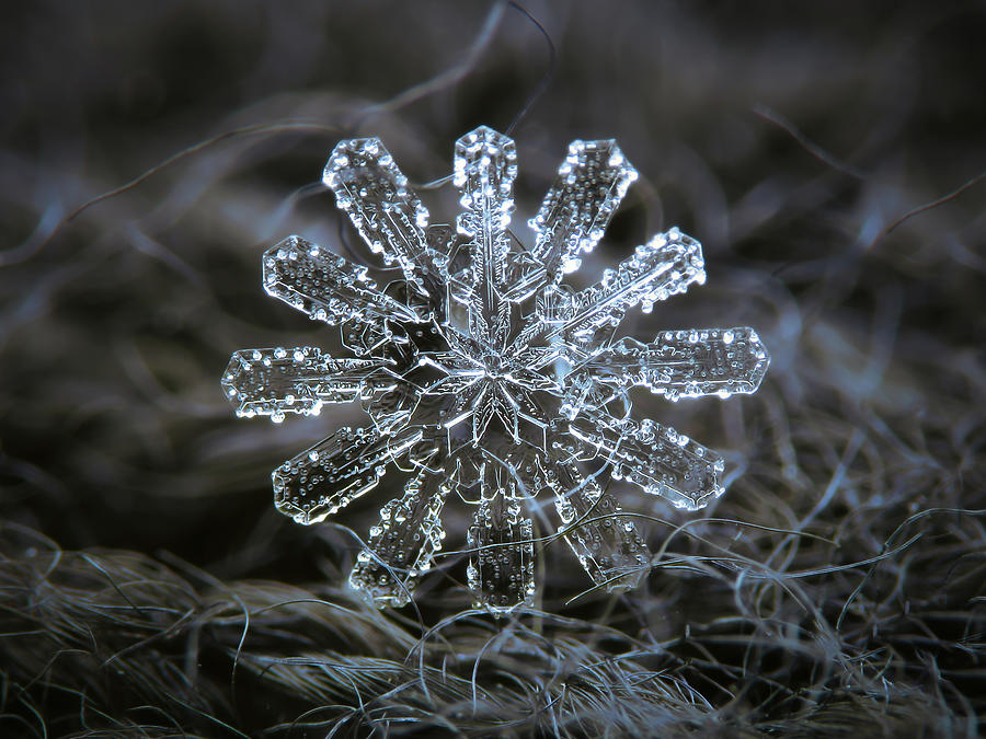 December 18 2015 - snowflake 3 by Alexey Kljatov