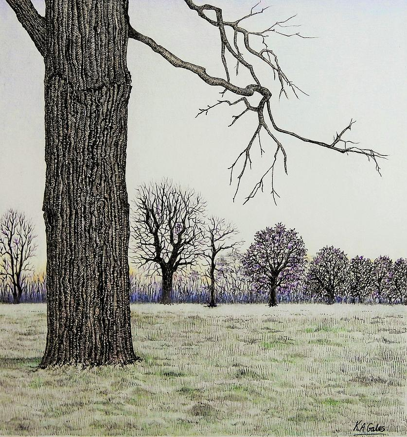 Winter Trees by Kathy Gales