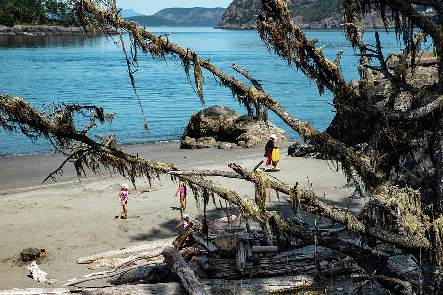 Deception Pass Beach West and Mossy Branches by Tom Cochran