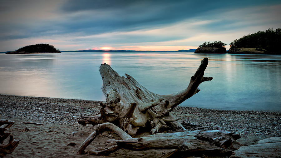 Deception Pass Driftwood and Subtle Sunset by SCENIC EDGE PHOTOGRAPHY