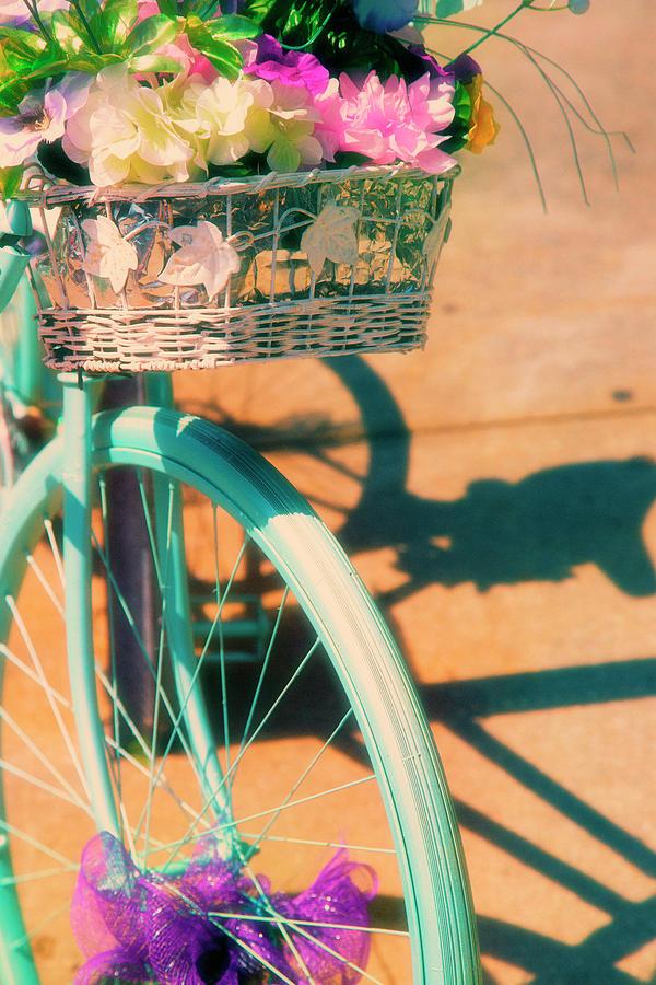 Decorative Bike by Karol Livote