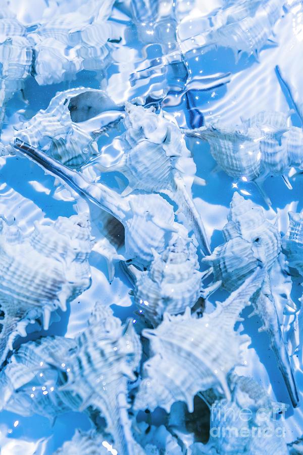 Blue Photograph - Deep Blue by Jorgo Photography - Wall Art Gallery