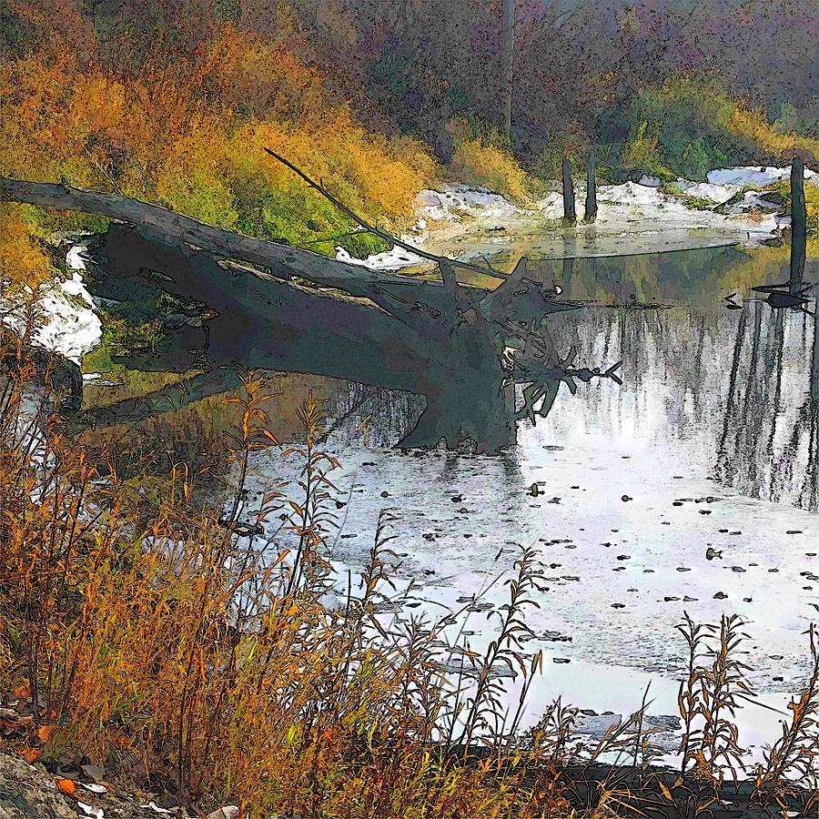 Deep Creek Log by Robert Bissett