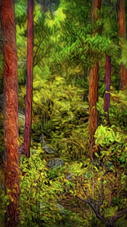 Deep Forest Stillness by Joel Bruce Wallach