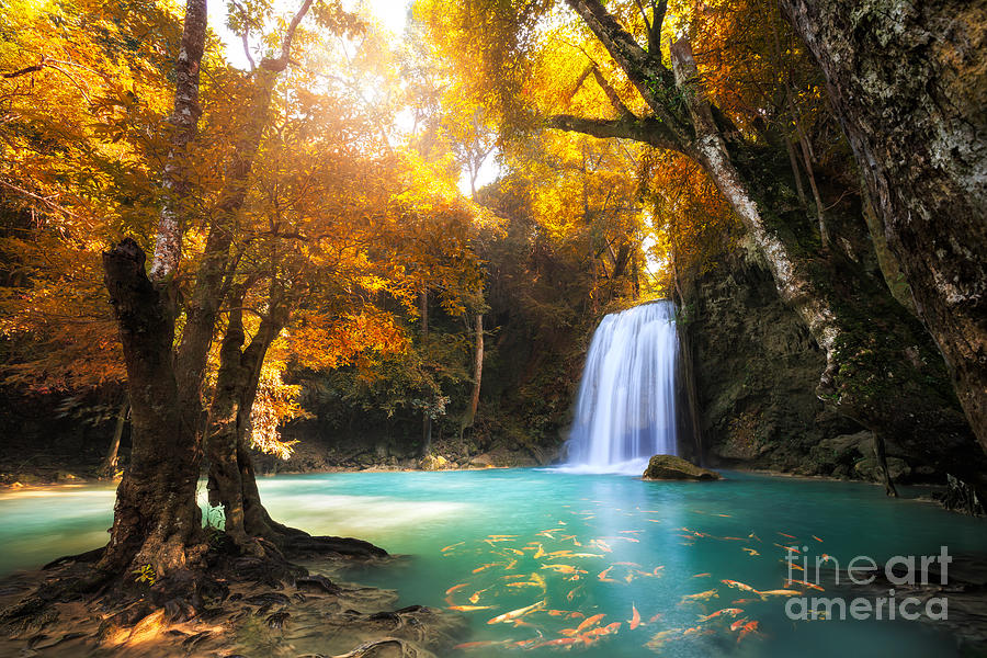 Koi Photograph - Deep Forest Waterfall In Kanchanaburi by Patrick Foto