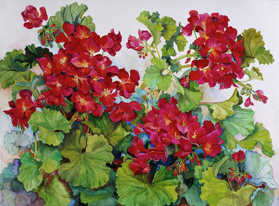 Red Geranium Painting - Deep Red Geraniums by Joanne Porter