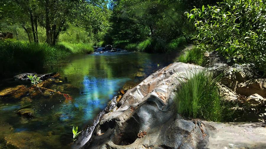 Deer Creek off Newtown Road by Lisa Redfern