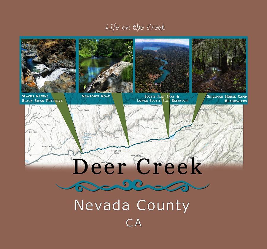 Deer Creek Series Views by Lisa Redfern