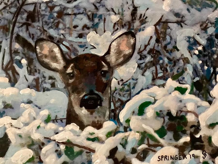 Deer in the Snow by Gary Springer