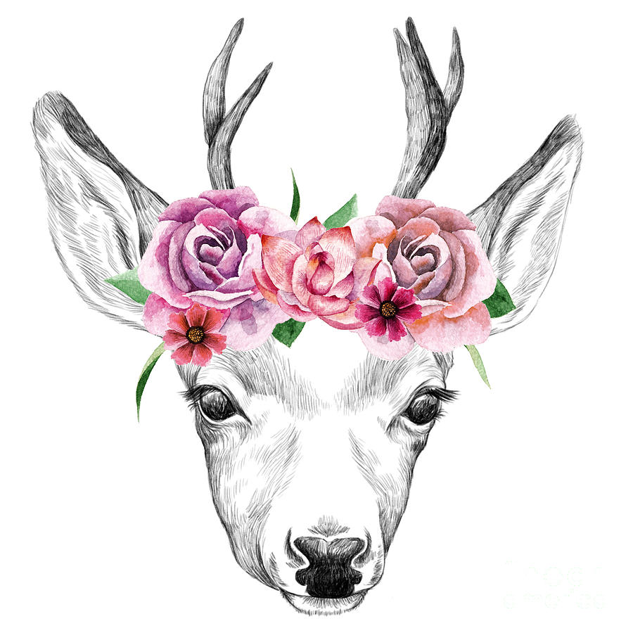 Date Digital Art - Deer Pencil Drawing With Watercolor by Maria Sem