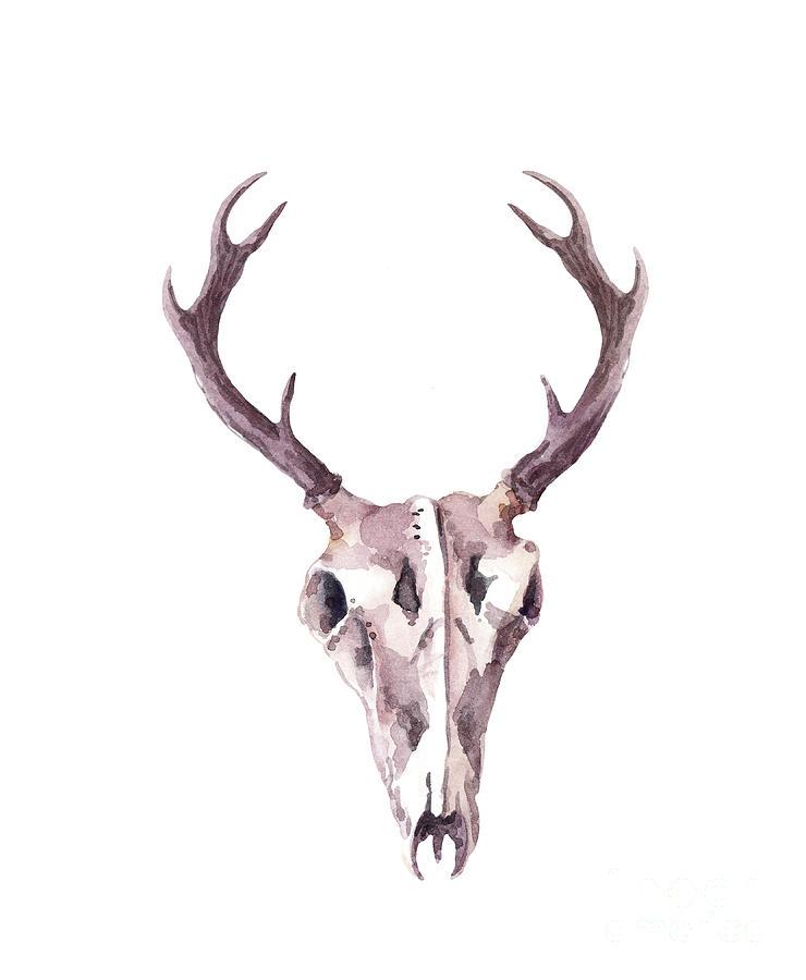 Deer Skull. Watercolor Digital Art by Zzorik