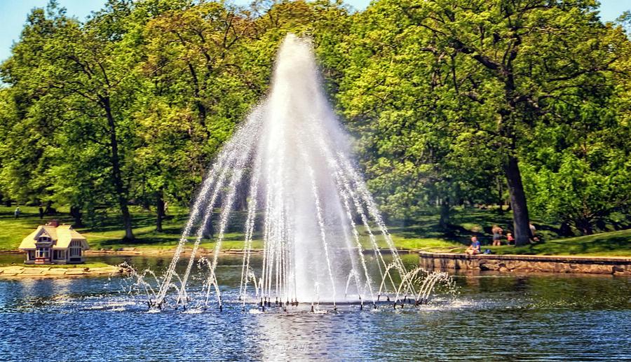 Deering Oaks Park Summer by Catherine Melvin