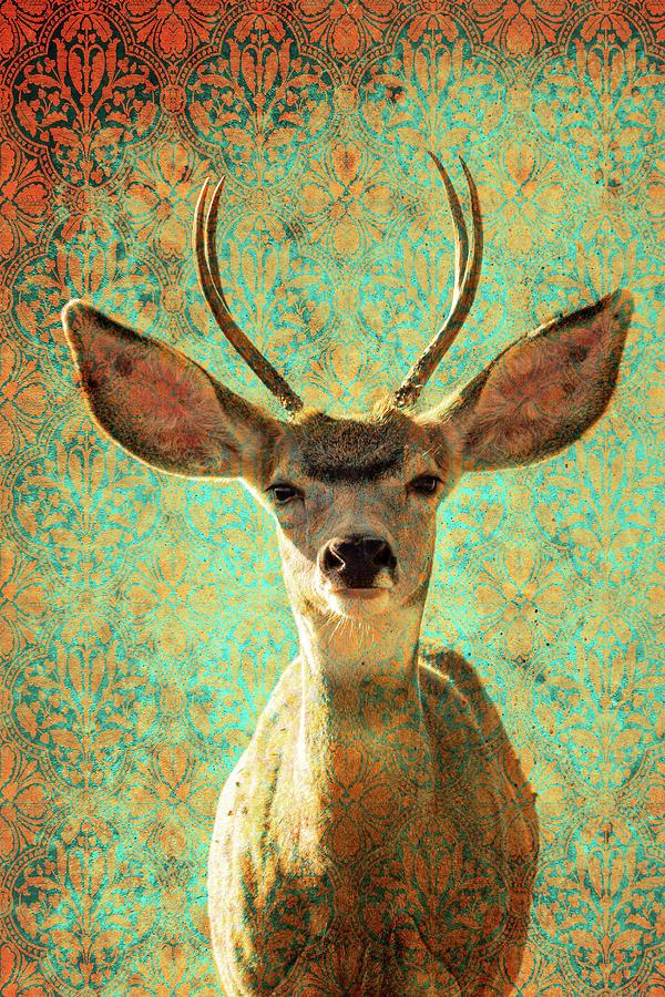 Deers Ears by Mary Hone