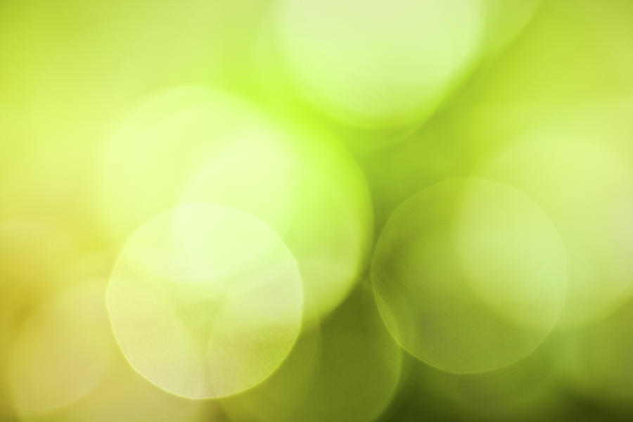 Defocused Spring Lights Photograph by Pawel.gaul