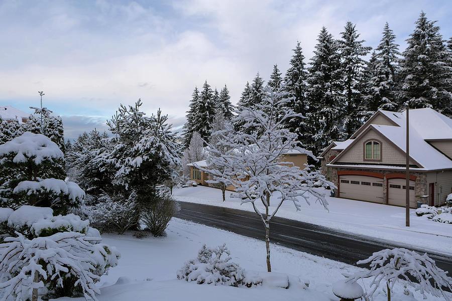 Deiced Street in Upscale Residential Neighborhood in Winter by David Gn
