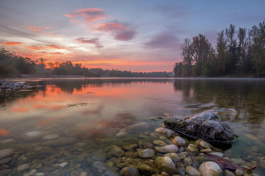 Delicate colors of autumn morning by Davorin Mance