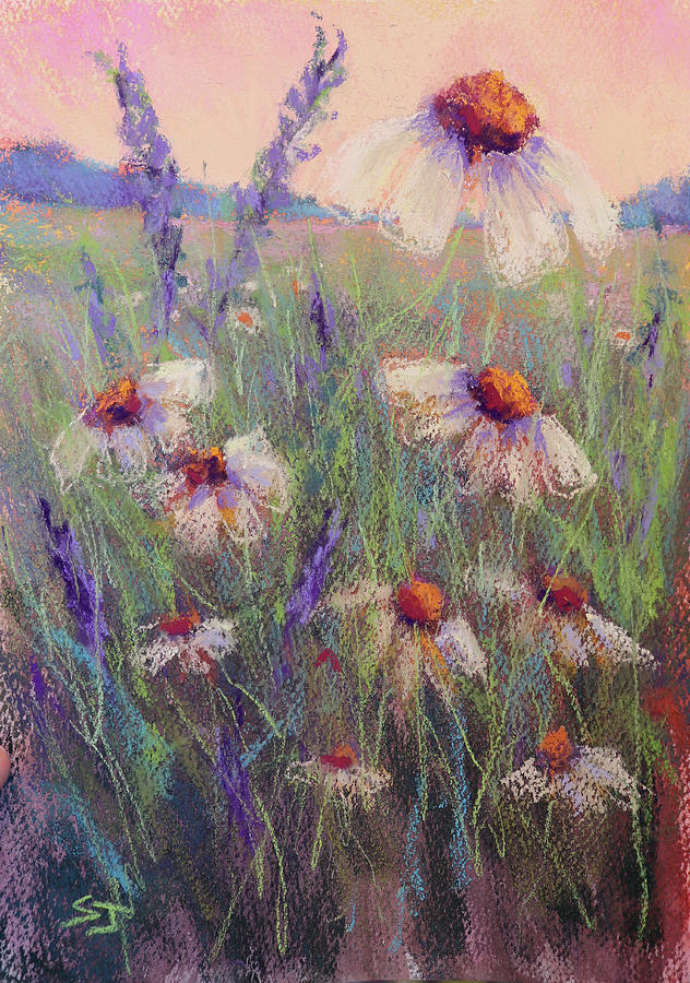 Delicate Daisies by Susan Jenkins
