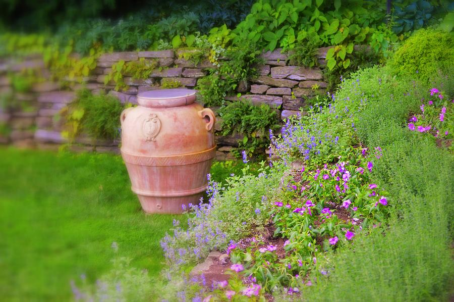 Delights Of The Summer Garden Photograph