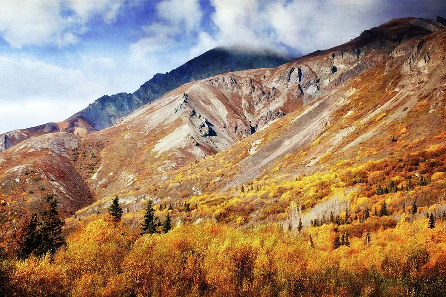 Denali Mountains by Marty Koch