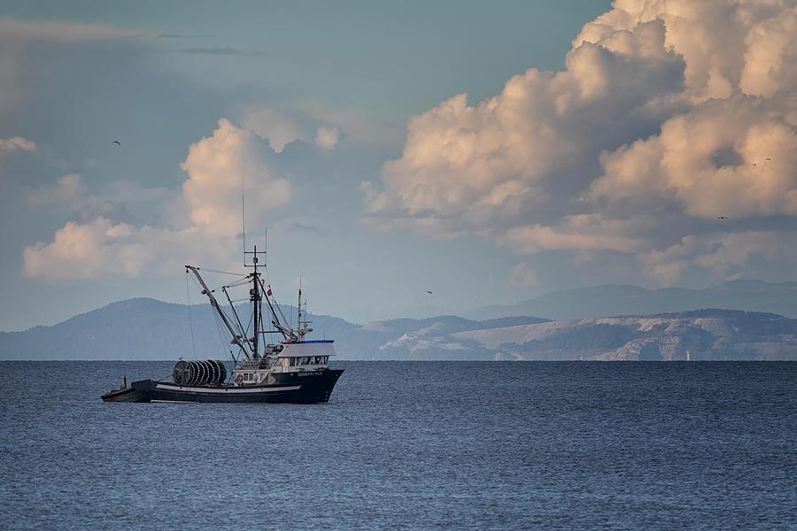 Denman Isle Photograph