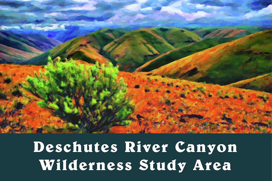 Deschutes River Canyon 1 by Chuck Mountain