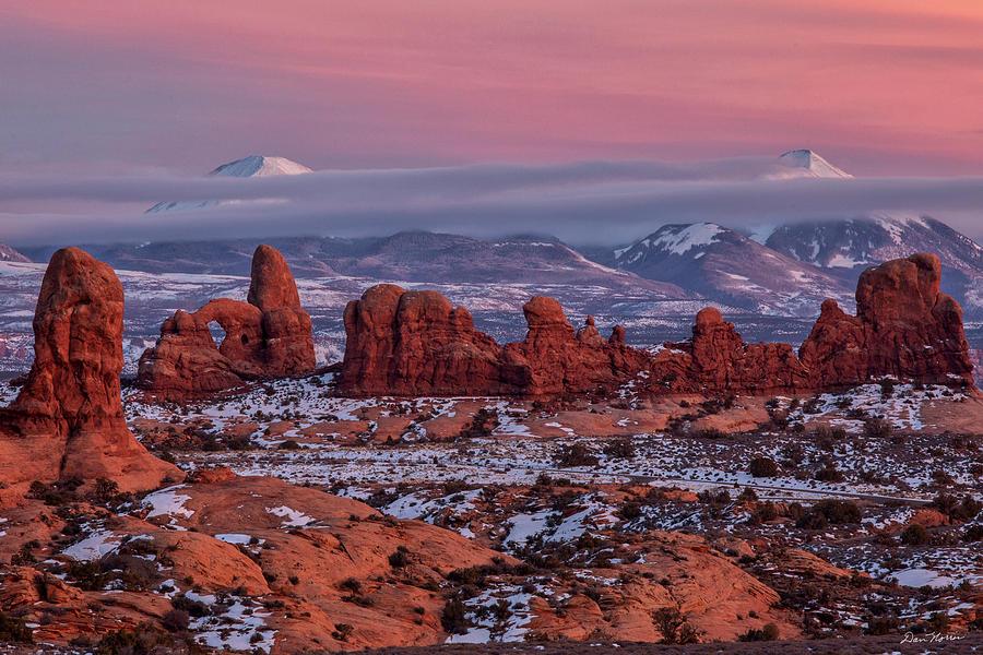 Desert Beauty 2 by Dan Norris