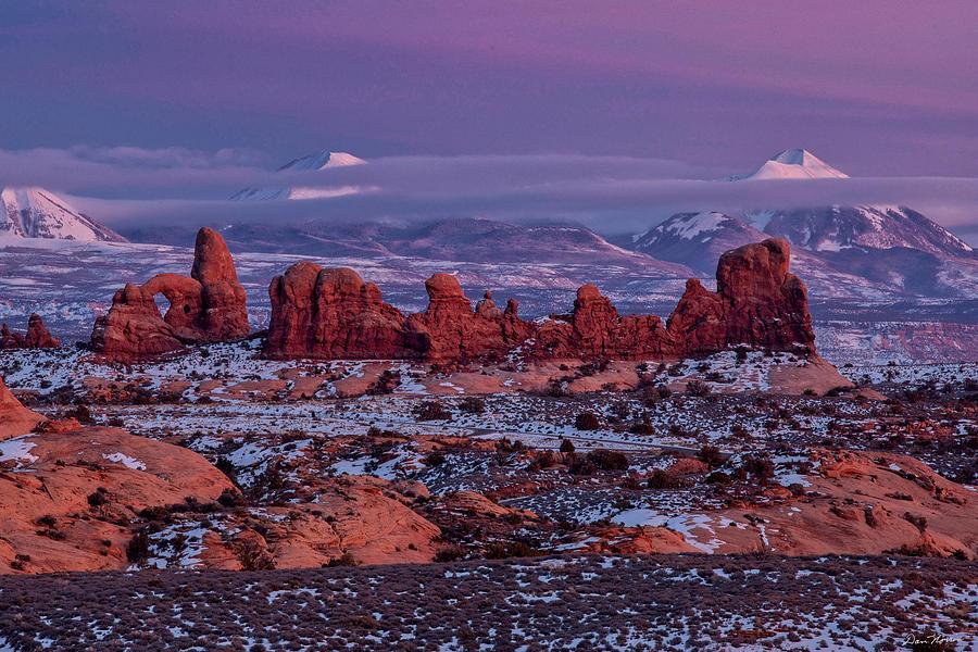 Desert Beauty 3 by Dan Norris