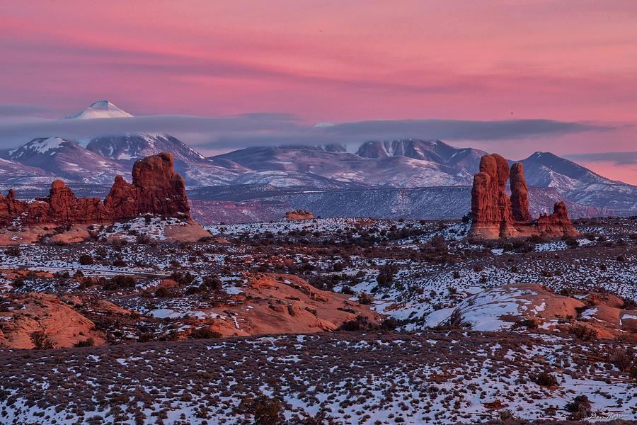 Desert Beauty by Dan Norris