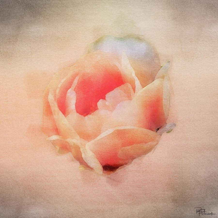 Desert Bloom in Digital Watercolor by Rick Furmanek