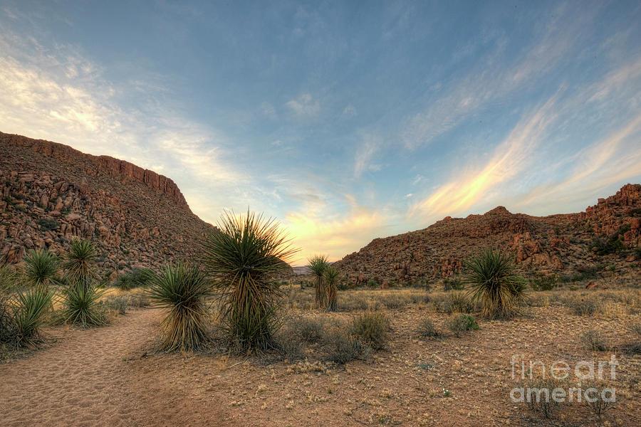 Hiking Photograph - Desert Hike by Joe Sparks