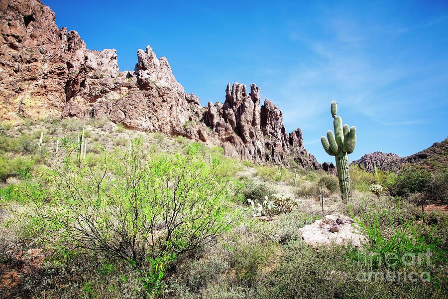 Desert Mountains by Scott Kemper