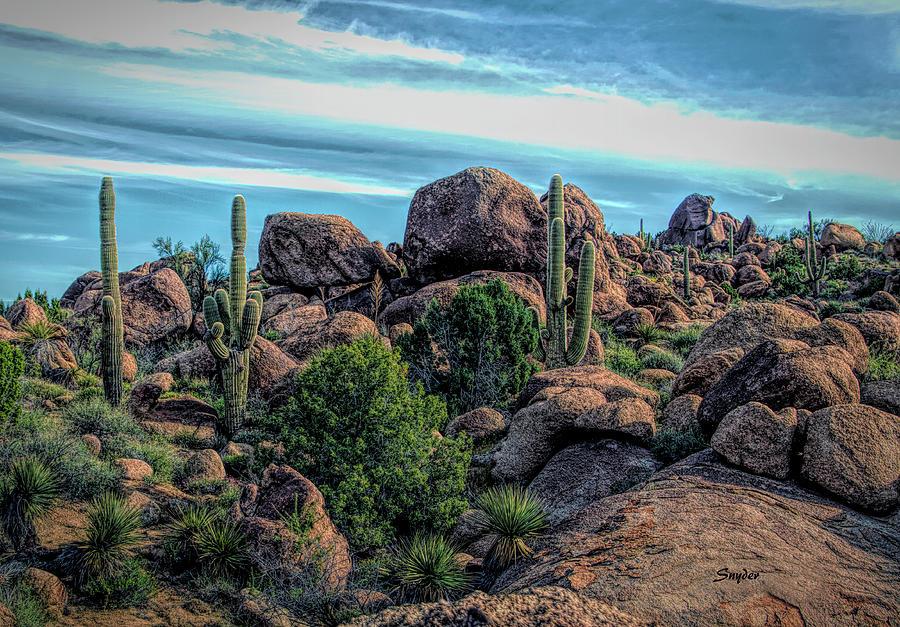 Cactus Photograph - Desert Scene Near Sedona Arizona Painting by Barbara Snyder