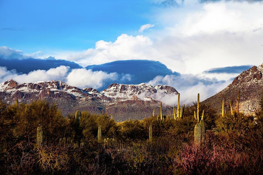 Arizona Photograph - Desert Snow by John Heywood