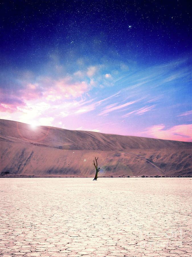 Sand Dunes Digital Art - Desert Stars by Phil Perkins