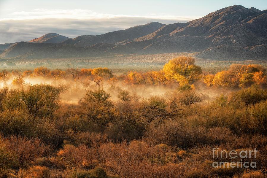 Desert Sunrise Photograph