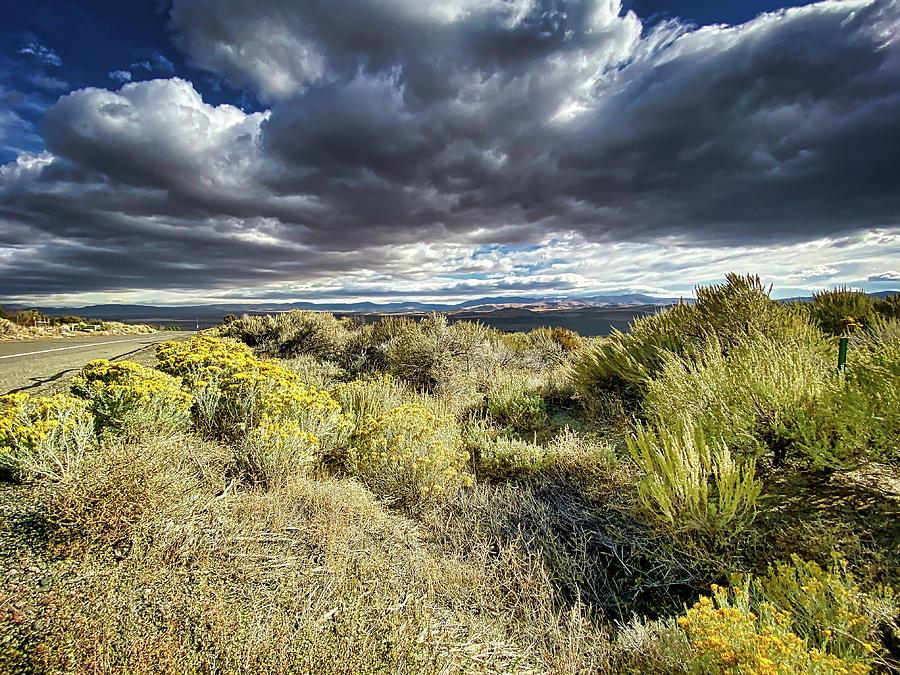 Desert Sunrise by Steph Gabler
