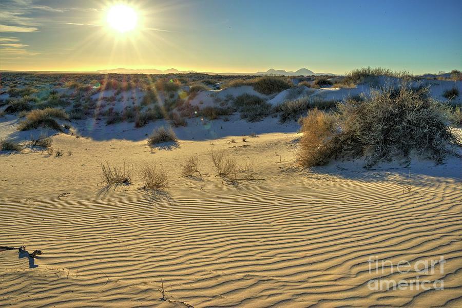 Desert Photograph - Desert Sunset by Joe Sparks