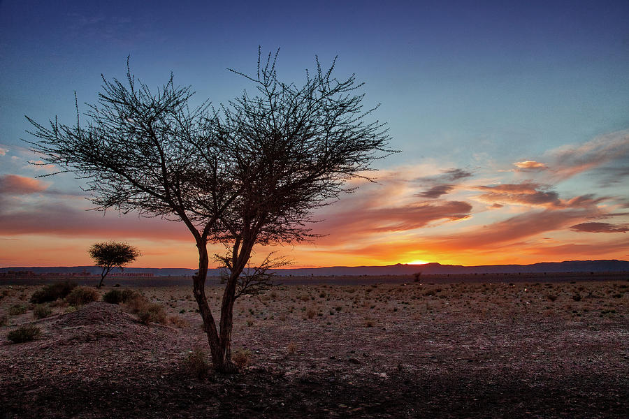 Morocco Photograph - Desert Sunset by Peter OReilly