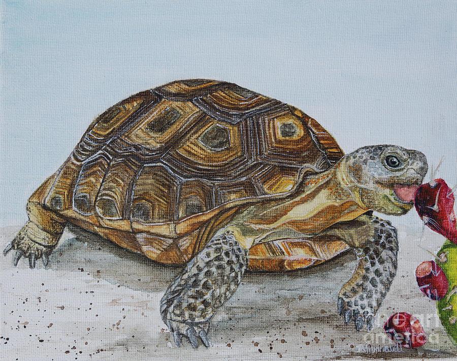 Desert Tortoise Painting