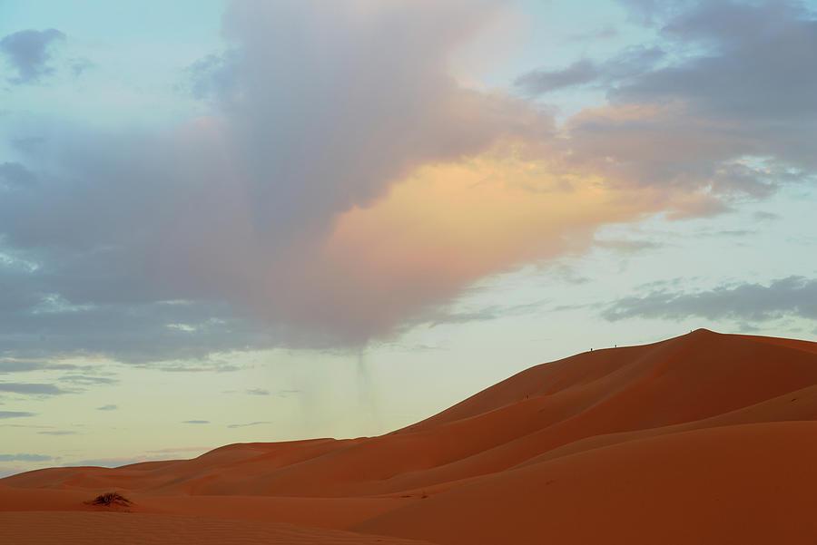 Desert by Yuri San