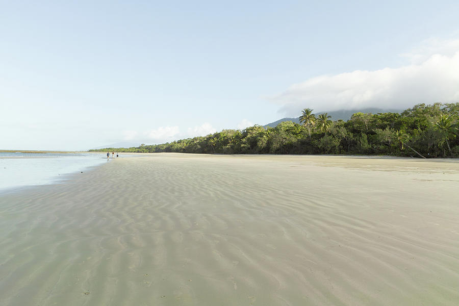 Deserted Beach And Tropical Rainforest Photograph by Ippei Naoi