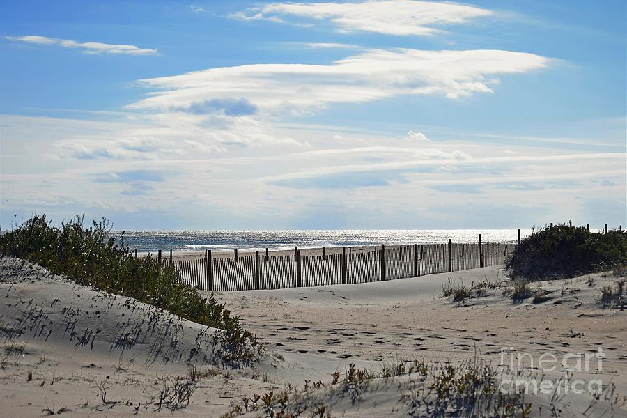 Deserted Beach by Patti Whitten