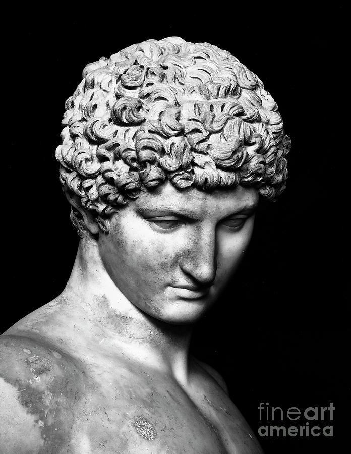 Antinous Sculpture - Detail Of Antinous  by Roman School