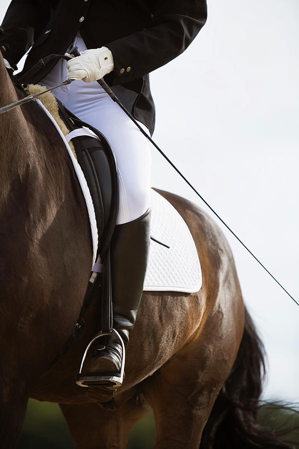 Detail Of Female Dressage Rider On Horse Photograph by Lea Roth