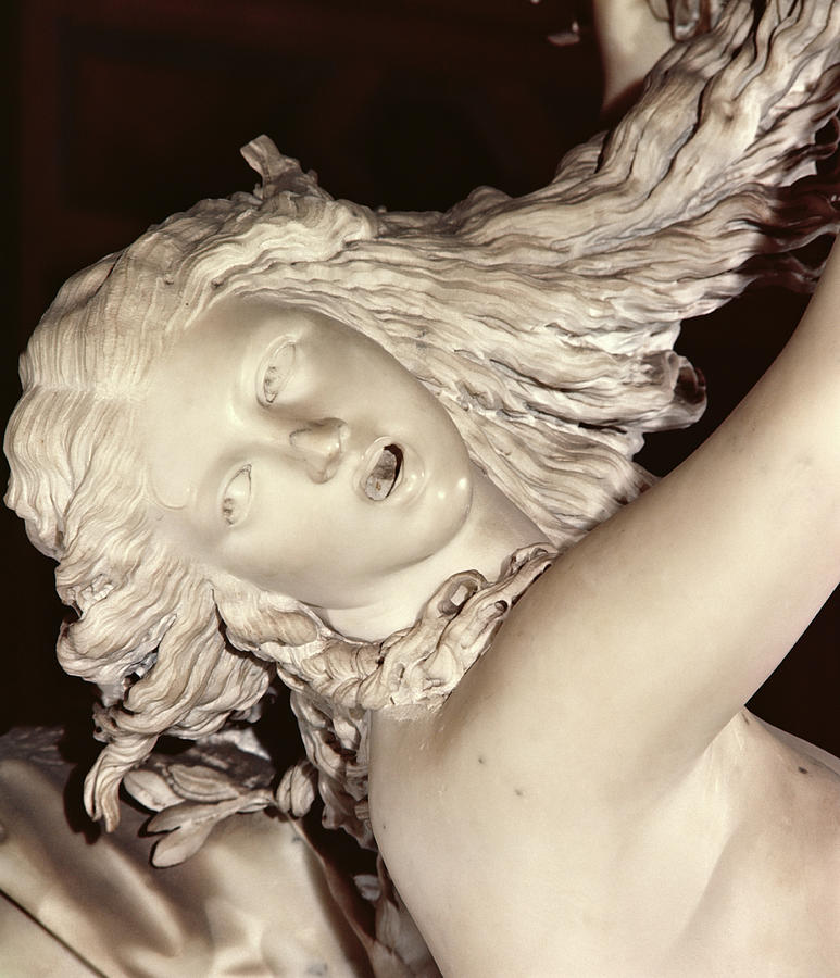 Detail Of The Head Of Daphne By Bernini