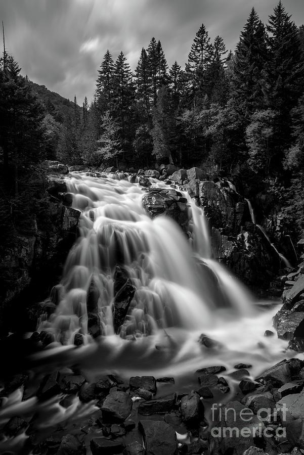 Devil Falls by Paul Quinn
