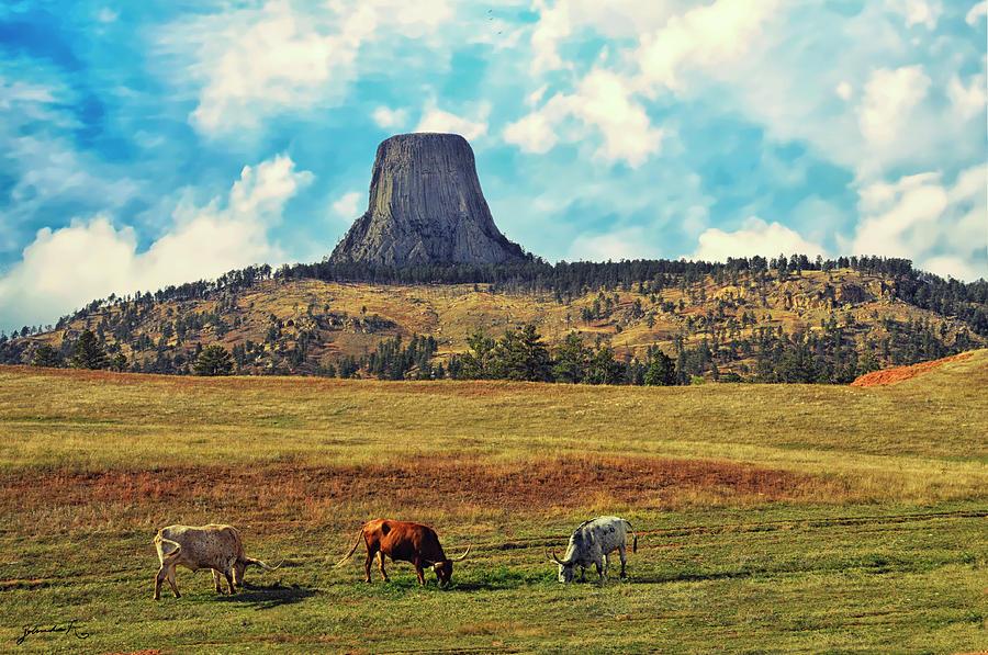 Devil's Tower Wyoming by Gerlinde Keating - Galleria GK Keating Associates Inc
