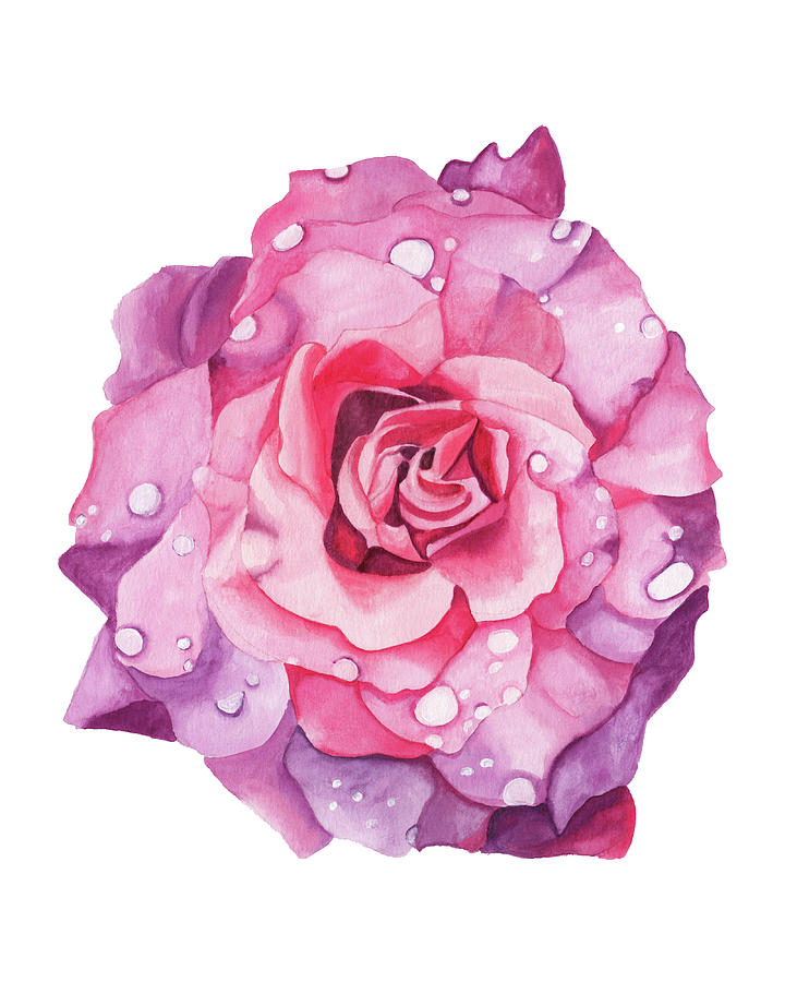 Dewy Rose by Brittany Bert Selfe