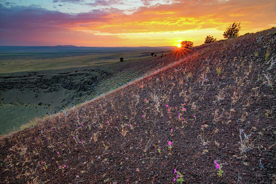 Beautiful Photograph - Diamond Craters Sunset by Leland D Howard